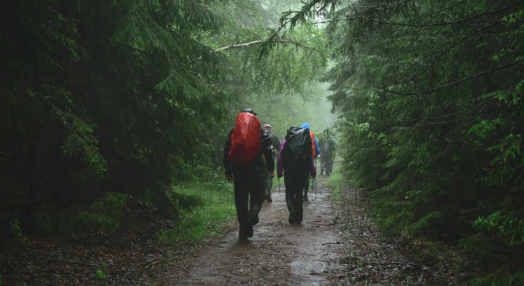 Wanderer im Regen